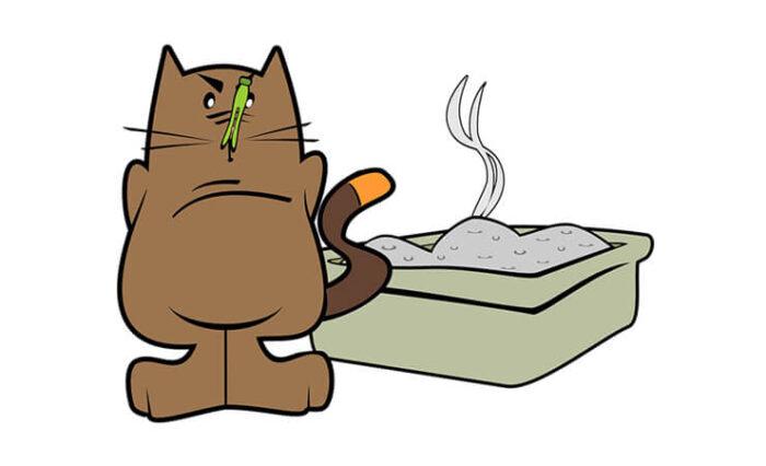A cica elkerüli a kellemetlen illatú macskaalmot